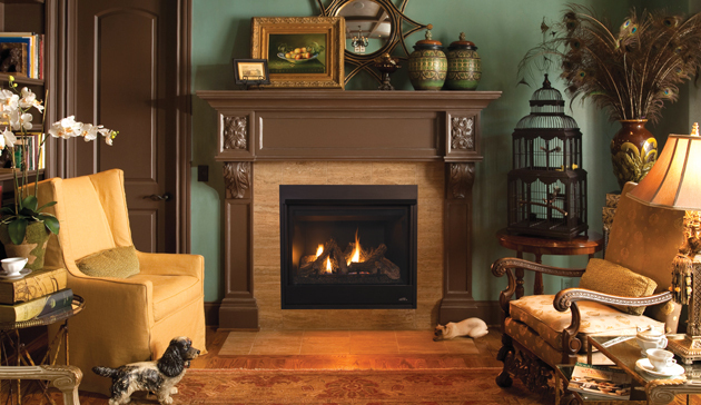 The new astria fireplace lineup winnipeg saskatoon for Astria fireplace